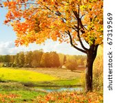 autumn at the morning park | Shutterstock . vector #67319569