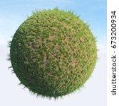 Small photo of Field Grass / Grass
