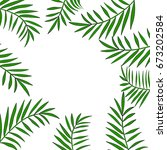 palm tree leaves frame or... | Shutterstock . vector #673202584