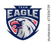 eagle falcon bird animal wild... | Shutterstock .eps vector #673356739