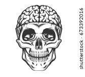human skull with open brain.... | Shutterstock .eps vector #673392016