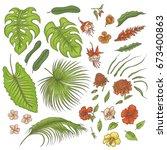 vector sketch colored texture... | Shutterstock .eps vector #673400863