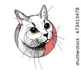 Stock vector  graphic vector illustration of a white cat s face 673413478