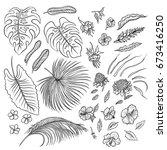 vector sketch black and white... | Shutterstock .eps vector #673416250