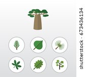 flat icon natural set of baobab ... | Shutterstock .eps vector #673436134