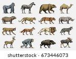 Gorilla  Moose Or Eurasian Elk  ...
