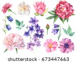Stock photo set flowers of bells lotus dog rose white rose carnations peony and anemone watercolor hand 673447663