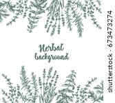 herbal background with aromatic ...   Shutterstock .eps vector #673473274