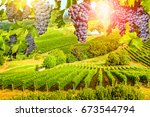 Red Grapes Hanging Vineyard Grape - Fine Art prints