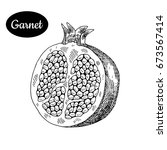 fresh garnet. hand drawn sketch ...   Shutterstock .eps vector #673567414