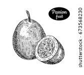 fresh passionfruit. hand drawn... | Shutterstock .eps vector #673568230