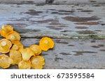 chanterelle mushroom on rustic... | Shutterstock . vector #673595584