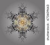 vector ornamental pattern in... | Shutterstock .eps vector #673609663