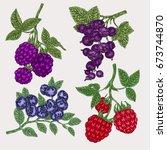 hand drawn sketch berries. set... | Shutterstock .eps vector #673744870