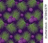 acai berries vector seamless... | Shutterstock .eps vector #673842379