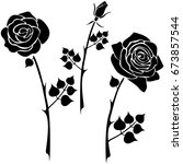 silhouette of a rose on a white ... | Shutterstock .eps vector #673857544