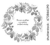 beer hop round frame sketch... | Shutterstock .eps vector #673866190