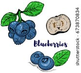 set of colorful blueberries...   Shutterstock . vector #673870834