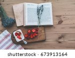 summer weekend concept. reading ... | Shutterstock . vector #673913164