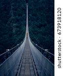the h ngeseilbr cke geierlay ... | Shutterstock . vector #673918120