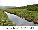 nature of the shiretoko... | Shutterstock . vector #673924504