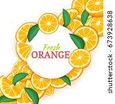 round white frame on citrus... | Shutterstock .eps vector #673928638