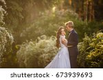 young bride and groom couple in ... | Shutterstock . vector #673939693