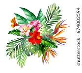 tropical flowers.watercolor | Shutterstock . vector #674002594