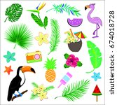 summer set icons palm leaves ... | Shutterstock .eps vector #674018728