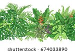 hand drawn branches and leaves... | Shutterstock .eps vector #674033890