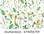 summer botanical concept ... | Shutterstock . vector #674056759