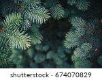 Stock photo fir tree brunch close up shallow focus fluffy fir tree brunch close up christmas wallpaper 674070829