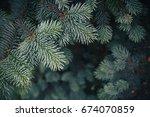 fir tree brunch close up.... | Shutterstock . vector #674070859