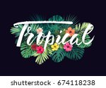 summer hawaiian design for card ... | Shutterstock . vector #674118238