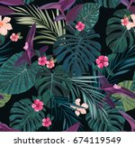 seamless botanical exotic... | Shutterstock . vector #674119549
