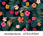 seamless hand drawn tropical... | Shutterstock . vector #674119564