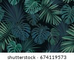 seamless hand drawn botanical... | Shutterstock . vector #674119573