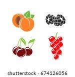 abstract fruit   fresh berries... | Shutterstock .eps vector #674126056