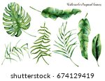watercolor set with tropical... | Shutterstock . vector #674129419