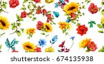 wide seamless pattern of... | Shutterstock .eps vector #674135938