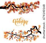 red asian autumn maple branch... | Shutterstock .eps vector #674140168