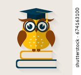 wise owl with books and... | Shutterstock . vector #674163100