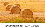 Bales Of Hay At Field In Summe...