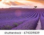valensole plateau  lavender...   Shutterstock . vector #674339839