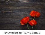Red Poppies Flowers On Dark...