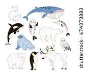arctic animals clip art... | Shutterstock .eps vector #674373883
