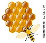 honey bee and honeycombs | Shutterstock .eps vector #67437949