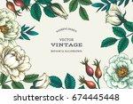 vector background with wild... | Shutterstock .eps vector #674445448