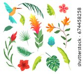 vector summer set of tropical... | Shutterstock .eps vector #674458258