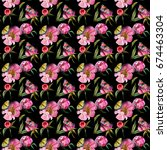 wildflower peony flower pattern ... | Shutterstock . vector #674463304